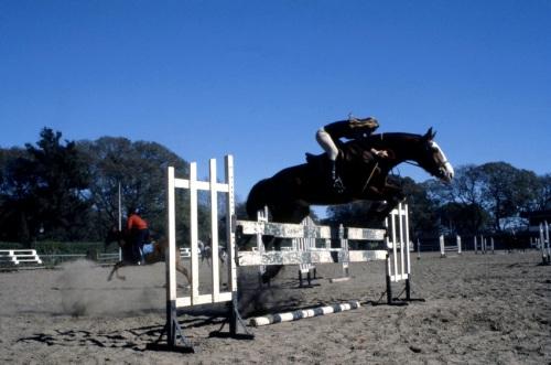 caballos Mediana